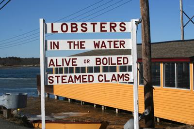 brown s lobster pound lobster seafood restaurant
